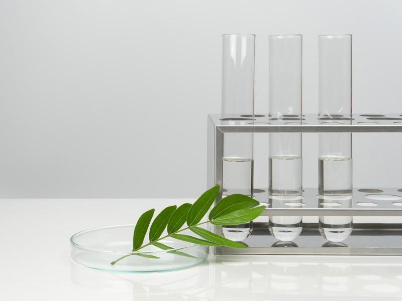 Dermokosmetyk Basiclab